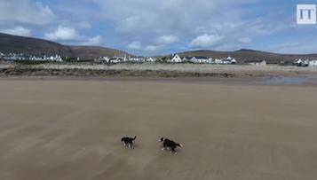Plaża wróciła na kamieniste wybrzeże po 33 latach